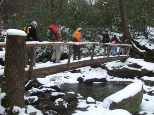 Wilderness Wildlife Week hikes range from easy to strenuous.